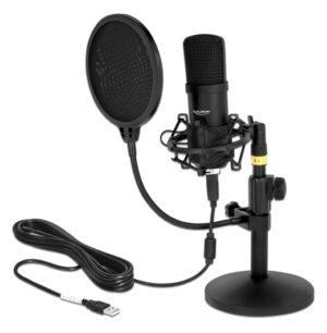 DELOCK μικρόφωνο studio με pop φίλτρο & αντιανέμιο 66300